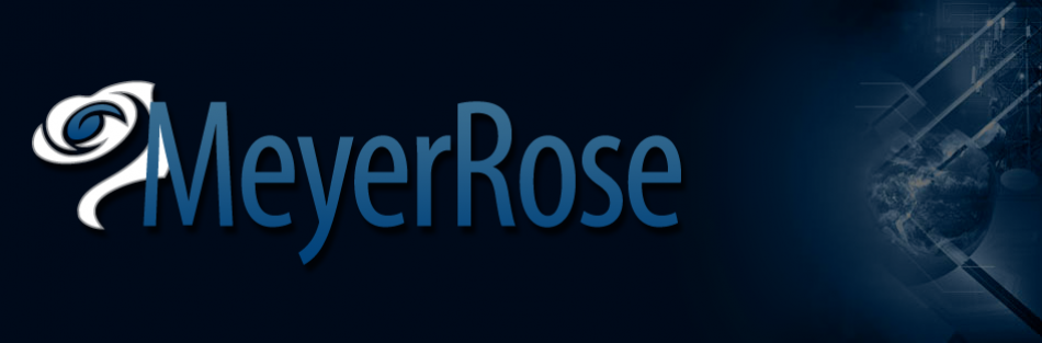 The MeyerRose Group - Strategic Consulting, Executive Development, & Thought Leadership